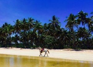 Os muitos Paraísos da Ilha de Boipeba