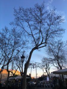 BCN, Barcelona ao fim da tarde